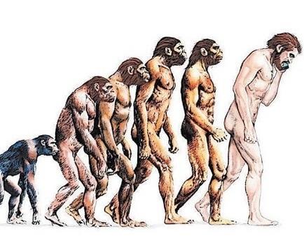 Os humanos são seres que possuem estruturas cognitivas voltadas à aprendizagem - Exame OAB